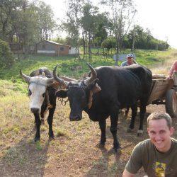 Buchtipp Rente mit 40: Finanzielle Freiheit und Glück durch Frugalismus